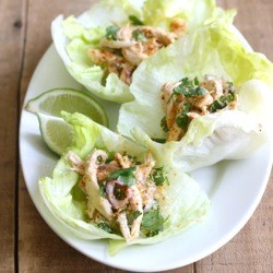 Toasted Coconut Chicken Lettuce Wraps