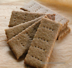 Vegan Homemade Graham Crackers