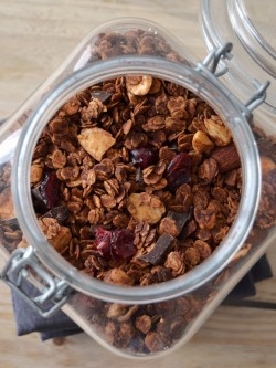 Chocolate Granola with Red Berries Recipe