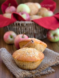 Apple Cinnamon Raisin Muffins Recipe