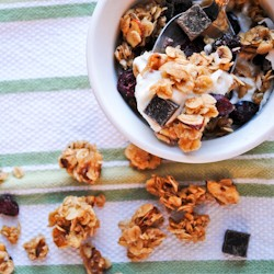 Dark Chocolate Cranberry Coconut Granola Recipe