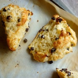 Yoghurt Scones with Currants
