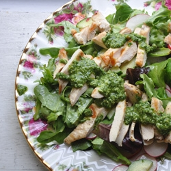 Grilled Chicken Salad with Cucumbers Radishes and Tarragon Pesto