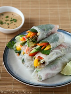 Healthy Veggie Spring Rolls with Peanut Dipping Sauce