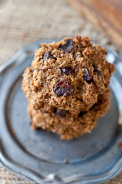 Chocolate Cranberry Spent Grain Cookies Recipe