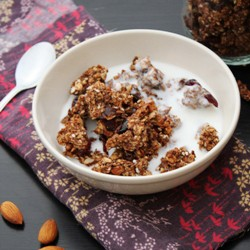Apple Chocolate Granola Recipe