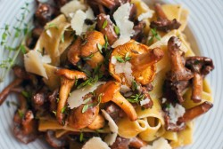 Pappardelle with chanterelles Recipe