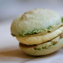 Passionfruit Matcha French Macarons