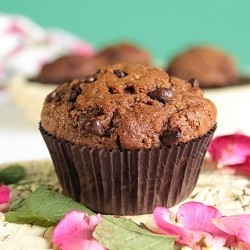 Chocolate Chocolate Muffins Recipe