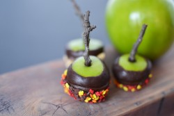 Chocolate Covered Mini Apples Recipe