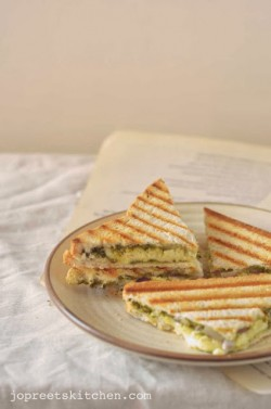 Cottage Cheese Sandwich Recipe