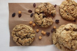 Gluten Free Oatmeal Raisin Coffee Cookies Recipe