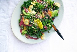Kale Avocado Salad with Blueberry Dressing Recipe