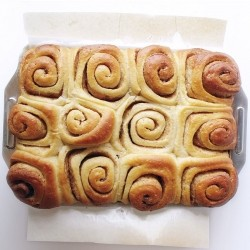 Norwegian Cinnamon Rolls