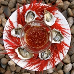 Oysters with Red Mignonette