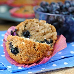 Vegan Blueberry-Coconut Muffins