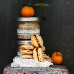 Blood Orange Macarons with Maple Orange Chocolate