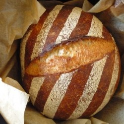 New Zealand Beer No Knead Bread