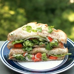 Broccoli Carrot Sandwich Recipe
