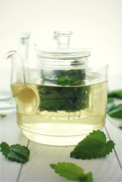 Lemon Balm Tea Recipe