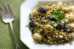 Potato Lentil Salad with Cilantro Pesto Recipe