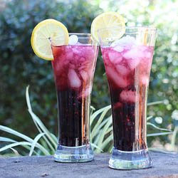 Blackberry Mojito Recipe