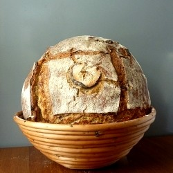 Apple sourdough bread