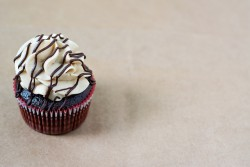 Chocolate Peanut Butter Cupcakes Recipe