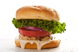 Indian Turkey Burger Recipe
