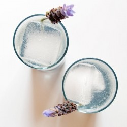 Lavender Collins Cocktail Recipe