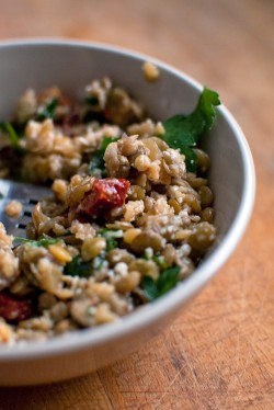 Lentil Salad with Sun Dried Tomatoes