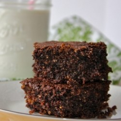 Nut and Coconut Butter Brownies