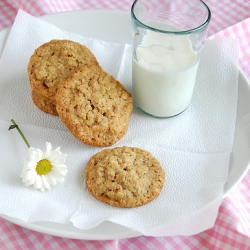 TLC Oatmeal Pecan Cookies Recipe