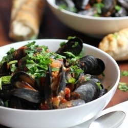 Spicy Mussels Marinara Recipe
