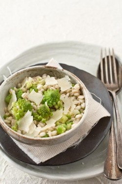Barley Broccoli Pecorino Salad Recipe