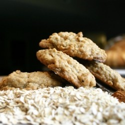 Oatmeal Cinnamon Chip Cookies