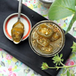 Bread and Butter Pickled Jalapenos